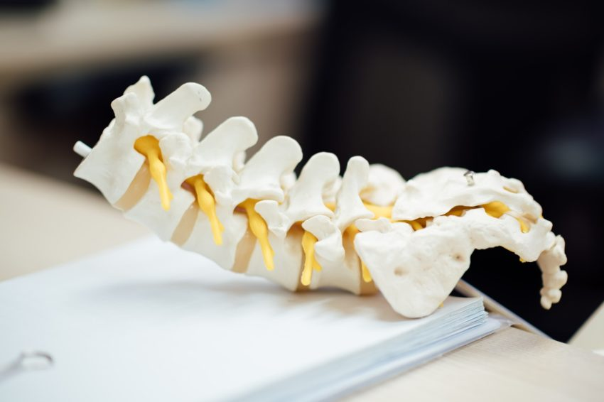 Tips for Choosing a Chiropractor